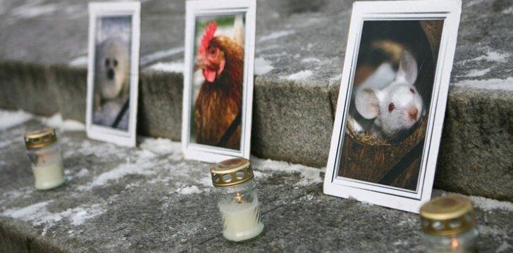 Kudirkos aikštėje gyvūnų teisių aktyvistų protestas