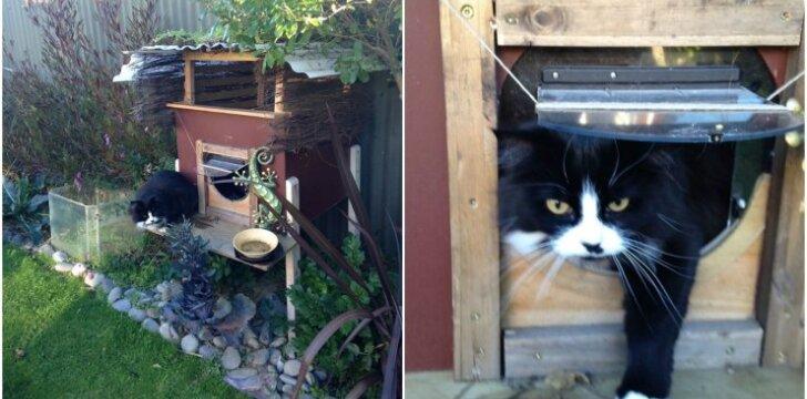Katės tvirtovė