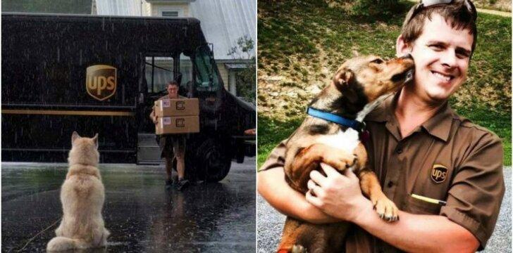Kurjeriai su kelyje sutiktais šunimis