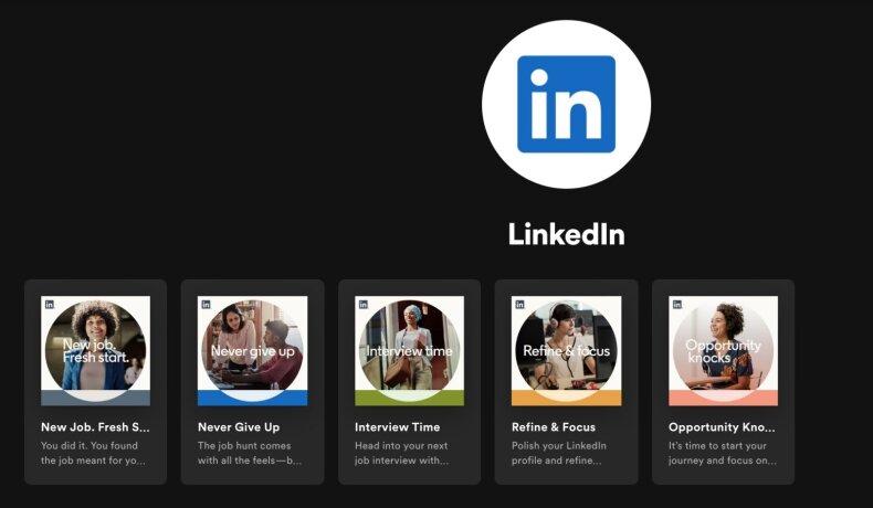 """LinkedIn"" ""Spotify"" profilis"