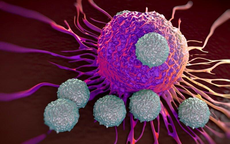 imunoterapija
