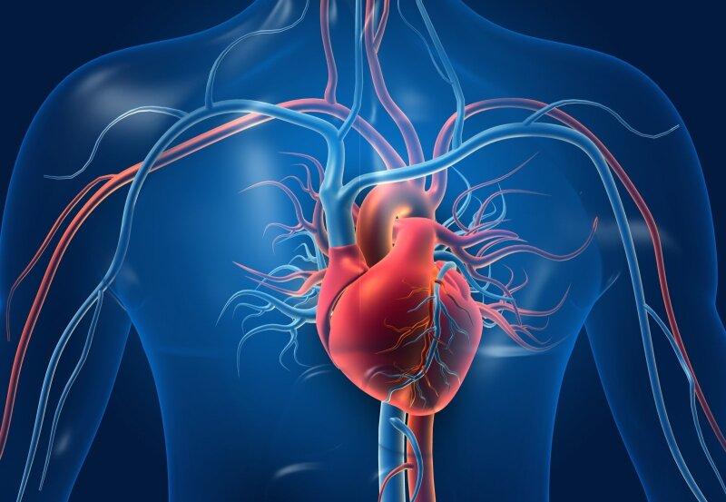 dietos ir širdies sveikatos