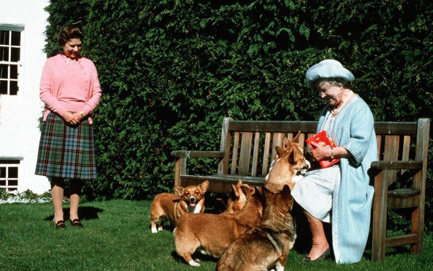 Karalienė Elžbieta II, karalienė Motina ir jos korgiai