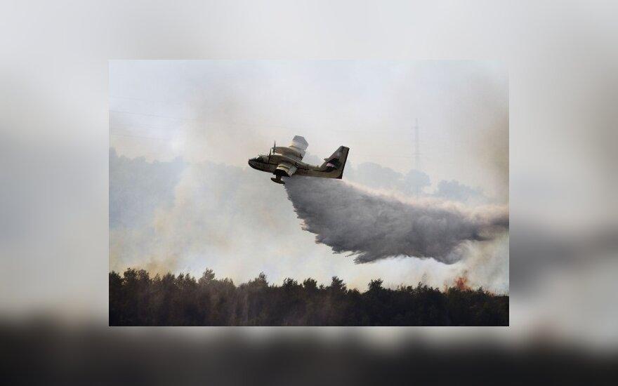 Izraelyje miškų gaisrai nusinešė 41 gyvybę