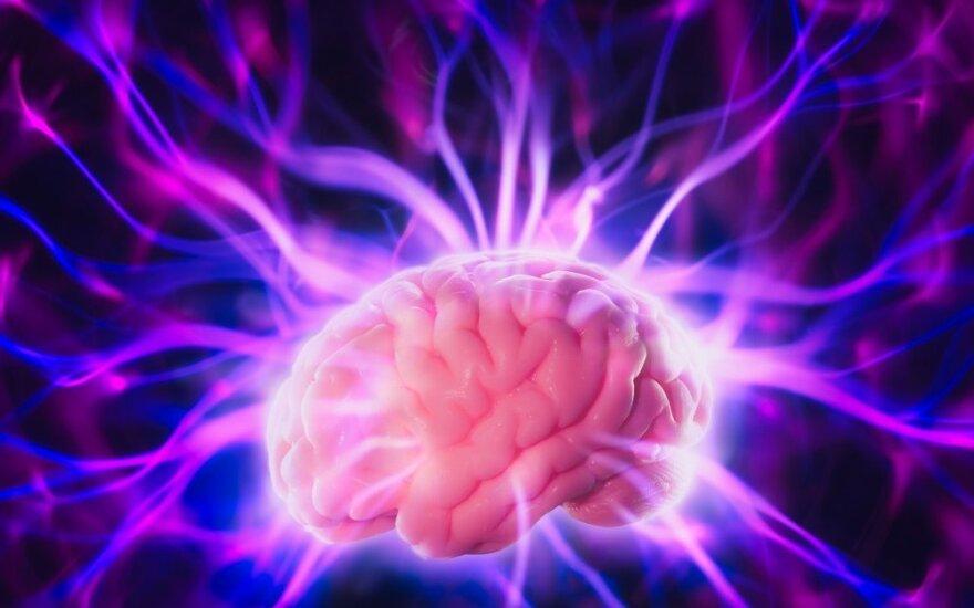 Įrodyta: smegenys gali regeneruoti