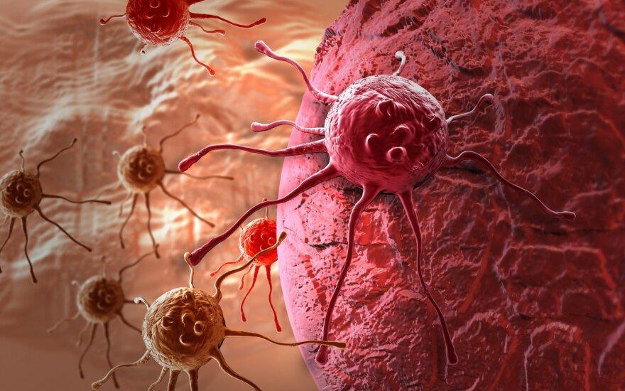 Vėžio ląstelės tūno visų žmonių kūnuose: mokslininkas įvardijo dažniausią priežastį, kodėl liga prabunda