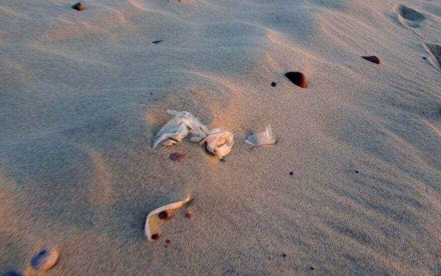 Paplūdimys ties Nida. Šiukšlės