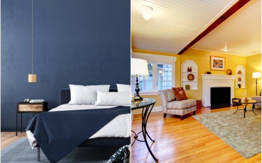 Spalvos namuose: kokias rinktis?