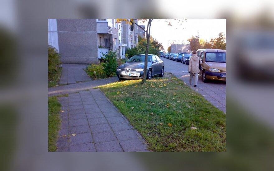 Vilniuje, Fabijoniškių g. 2010-10-10 10.20 val.