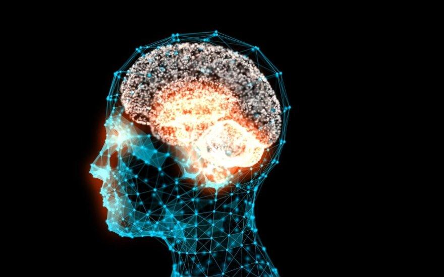 Mokslininkai išaugino nemirtingas sintetines smegenis