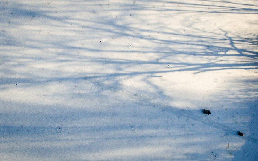 Aplinkos ministerija įspėja: lipti ant Kuršių ir Kauno marių – pavojinga