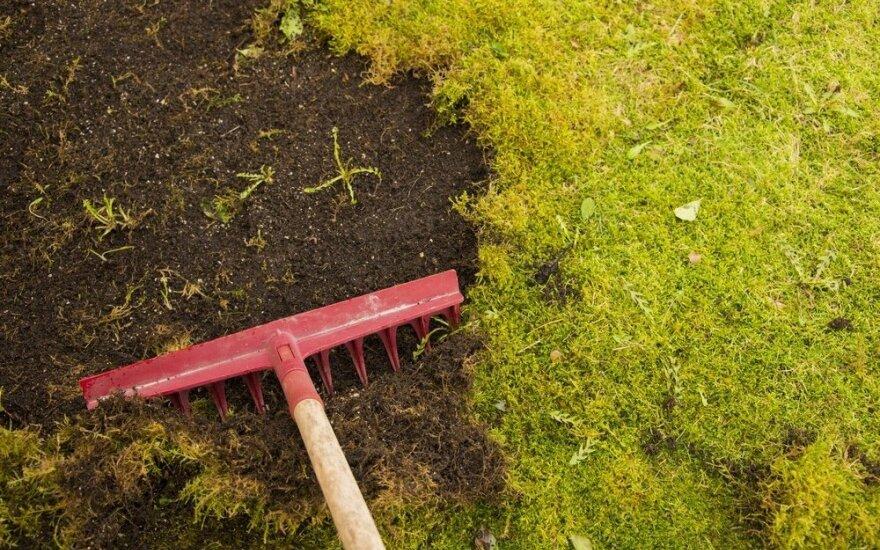 Žemdirbiai nebegalės naudoti kenksmingo glifosato piktžolėms naikinti