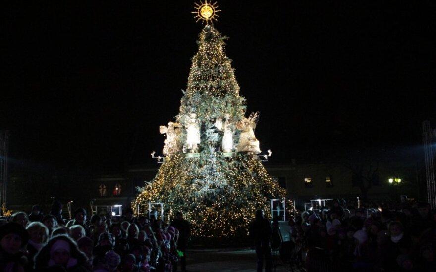 Kaune įžiebta auksu tviskanti Šv.Kalėdų eglė