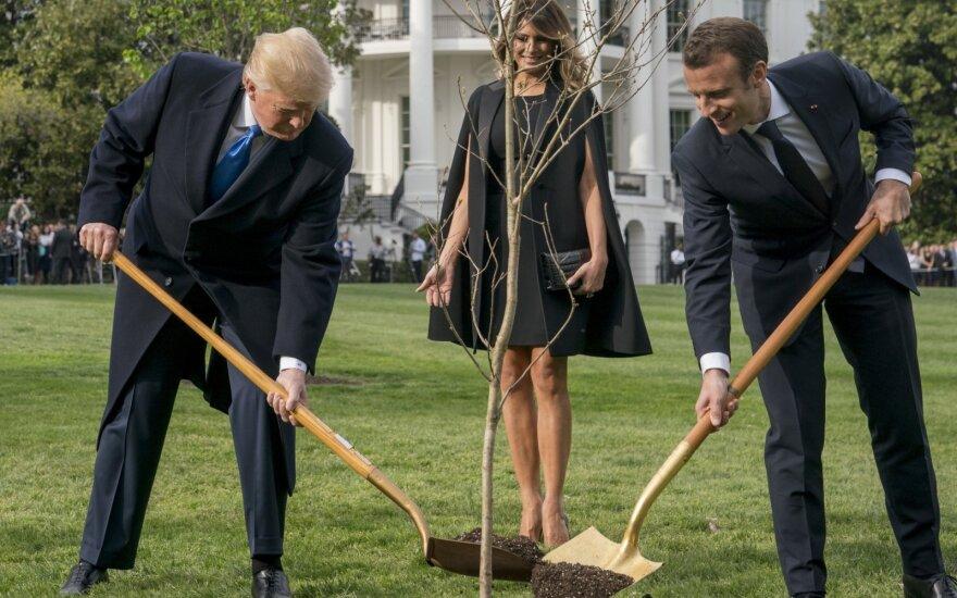 Vašingtone nunyko D. Trumpo ir E. Macrono draugystę simbolizavęs medelis