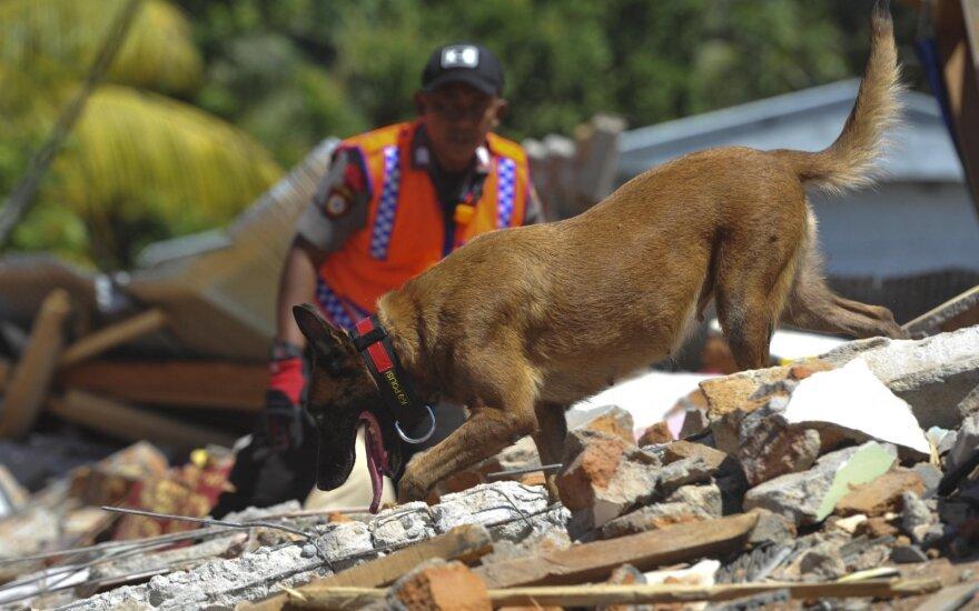 Žemės drebėjimas Indonezijoje