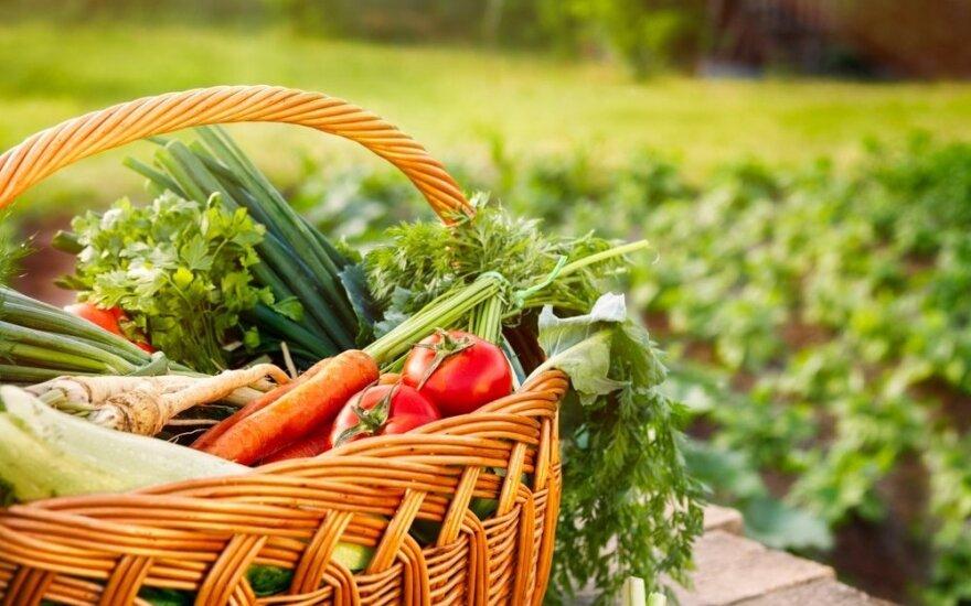 Sodininkų, gėlininkų ir daržininkų Mėnulio kalendorius 2021 m. birželiui – palankios ir nepalankios dienos