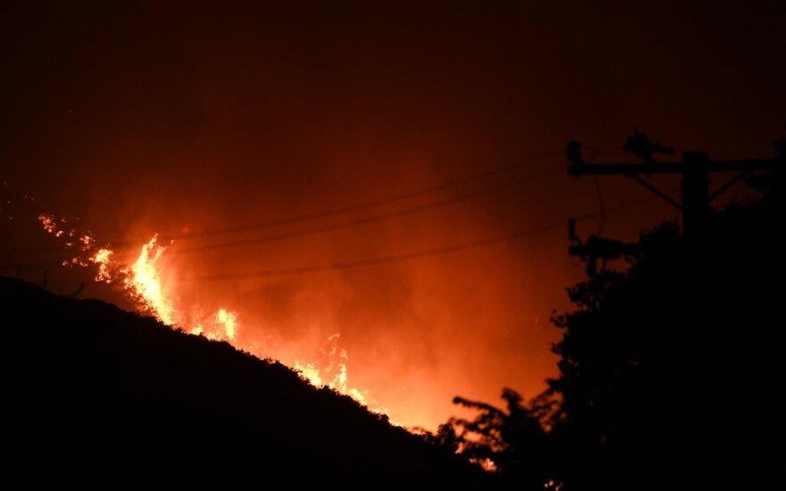 Los Andželo apylinkėse įsiplieskus dideliam gaisrui gyventojams nurodyta evakuotis