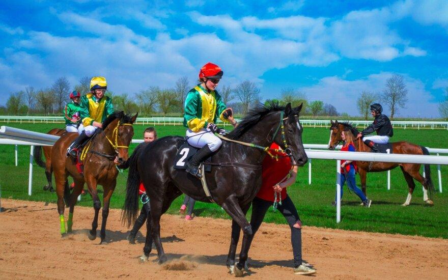 Žirgų lenktynės Raseiniuose / Foto: Eidvydas Kuniauskas
