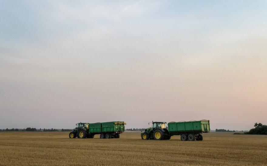 Derlius liūdina ne visus žemdirbius