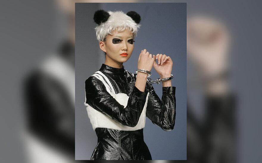 Bandi Panda