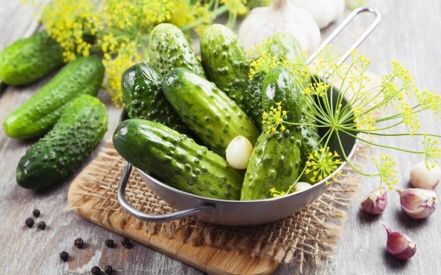 Greitas ir patikimas marinuotų agurkų receptas