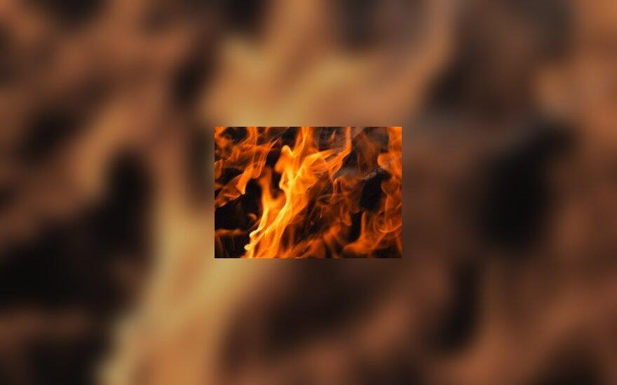 Bankoke per sprogimą sužeisti mažiausiai devyni žmonės