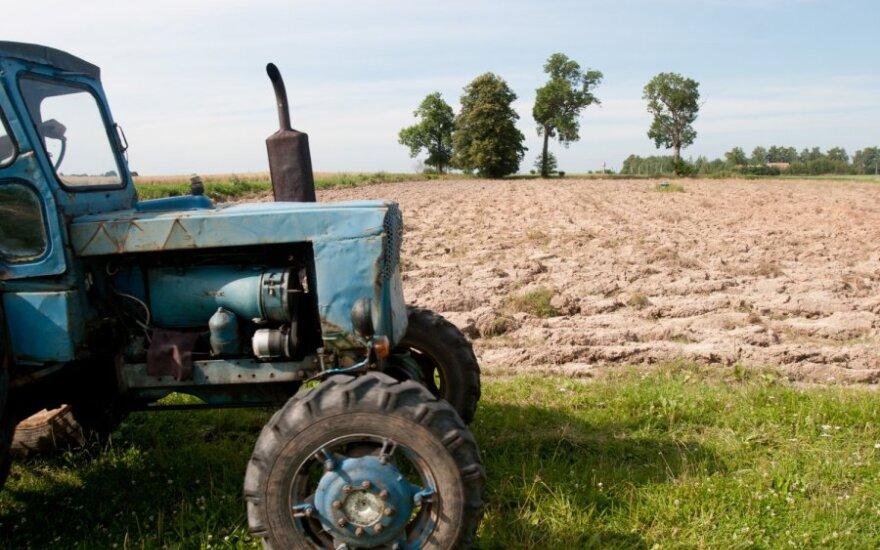 Kaip supaprastinti įdarbinimą ūkiuose