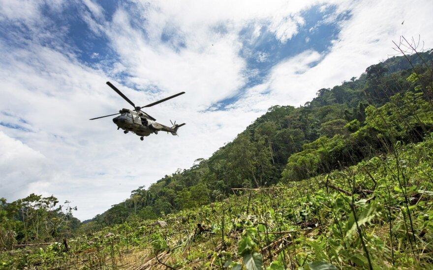 Venesuelos sraigtasparnis