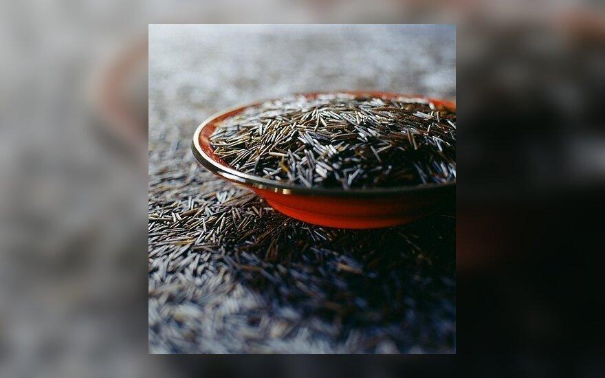Laukiniai ryžiai