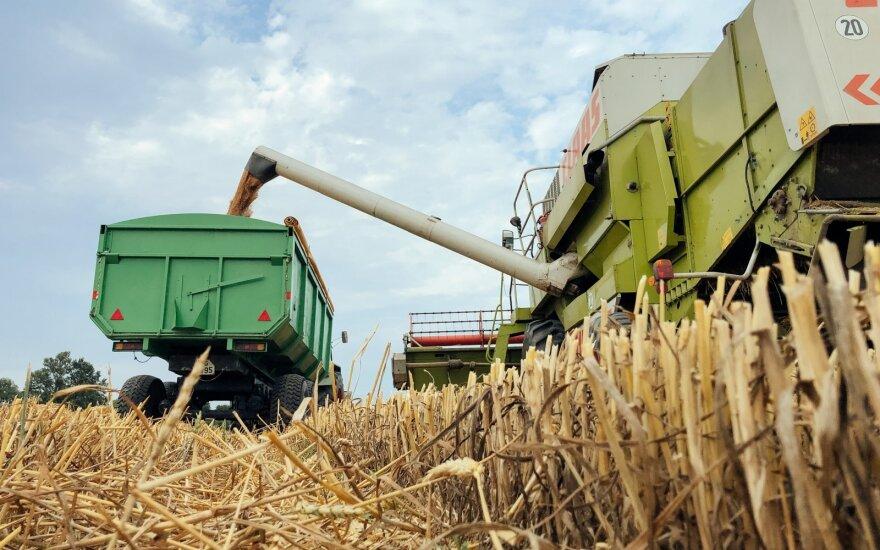 Svarsto juodžiausią scenarijų: gali įvykti maisto produktų kainų šuolis