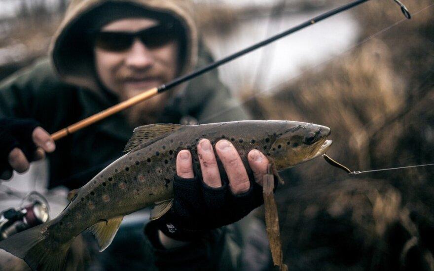 trout.lt žvejybos tinklaraštininko sugautas upėtakis
