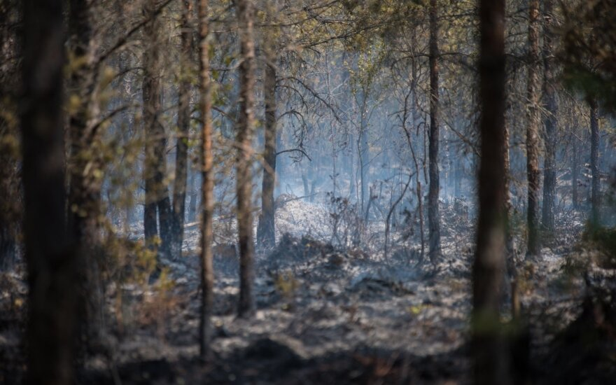 Swedish PM thanks Lithuania for assistance in fighting forest fires