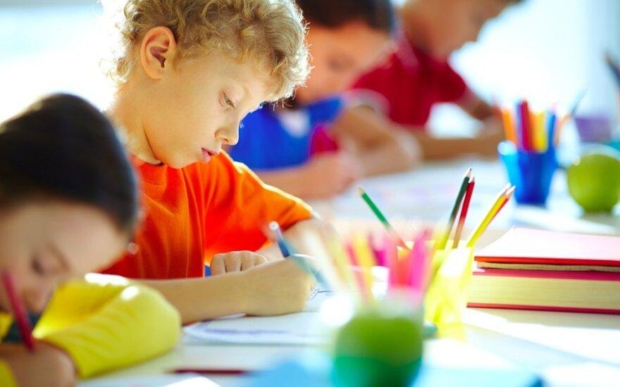 Tarptautiniu apdovanojimu įvertinta mokytoja: mokykloje, kaip gyvenime, negali būti atskirų dalykų