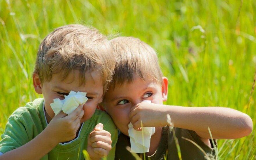 Šeimos gydytoja pataria: kaip apsaugoti vaiką nuo pavasario alergijos