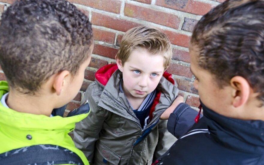 Patyčios prasideda jau pradinėse klasėse: kaip padėti vaikui?