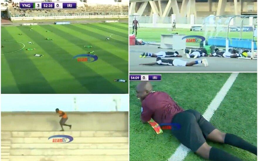 Bičių ataka Tanzanijoje ant žemės išguldė visą stadioną