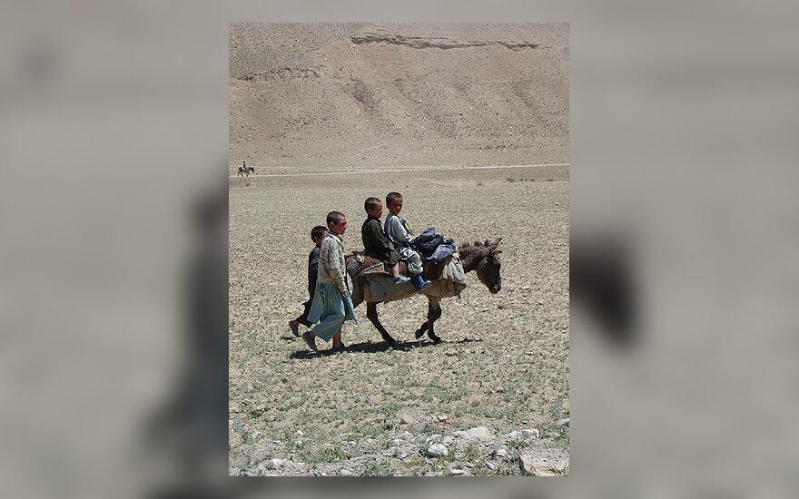 Vaikai joja ant asiliuko Afganistane