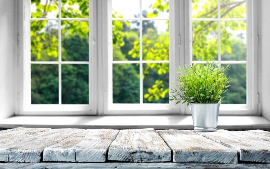 Dienos šviesos įtaką organizmui daug didesnė nei manyta: namuose jos turi būti kuo daugiau