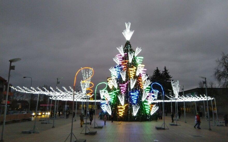 Panevėžio Kalėdų eglė