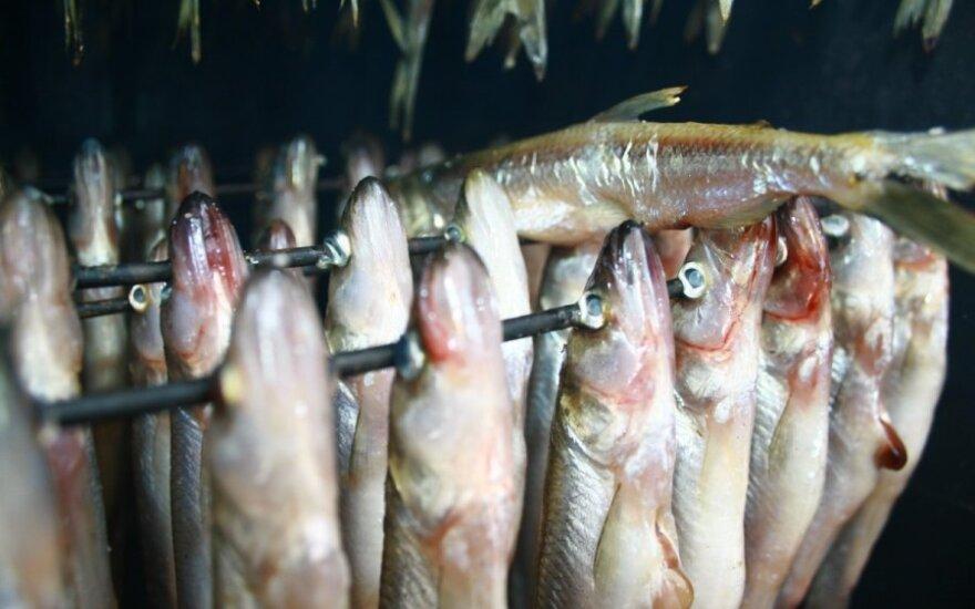Prieš Kalėdas Klaipėdoje atgims šviežių žuvų turgelis