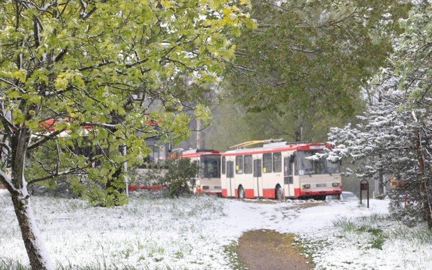 Sniegas užklupo Lietuvą