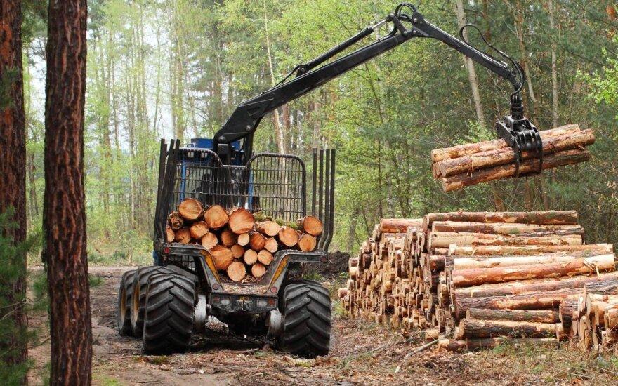 Investicijos į miškų technologijas