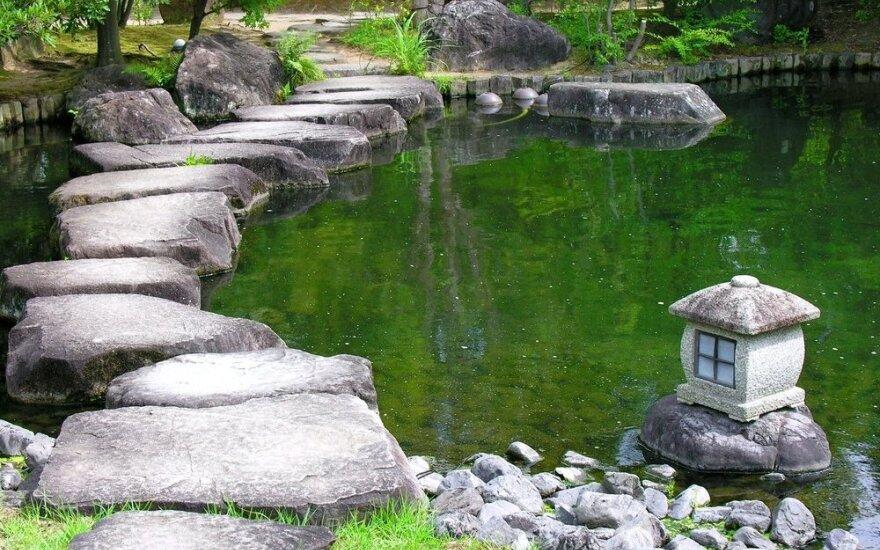 Alytuje bus japoniškas sodas su arbatos nameliu ir tvenkiniu