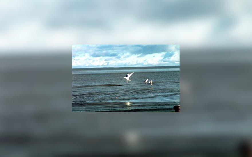Nida, jūra