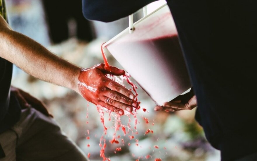 Kraujo kibiro iššūkis (Luko Šalnos nuotr.)