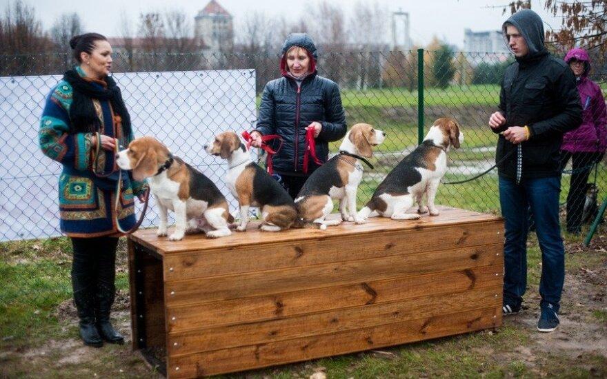 Šunų aikštelės atidarymas Kaune