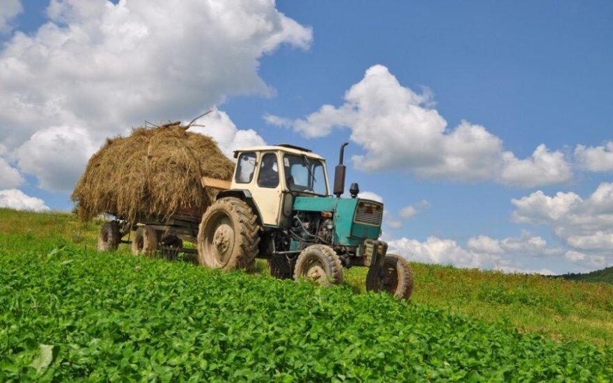 Jei ES institucijos nesutars, nuostolius patirs ūkininkai