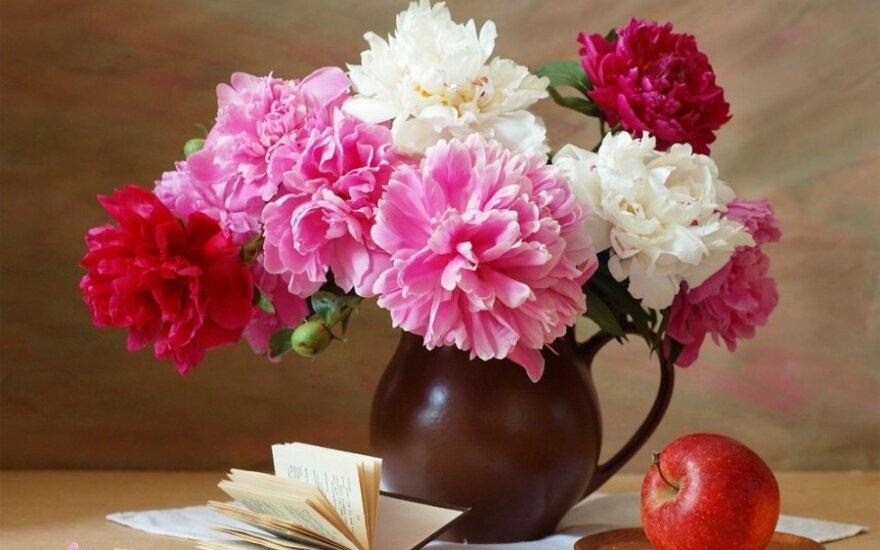 Gudrybės, kad nuskintos gėlės ilgai žydėtų