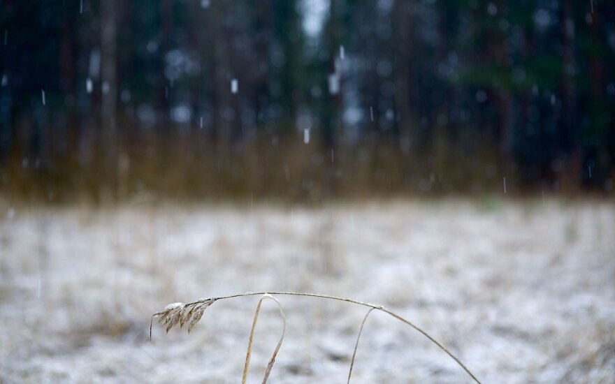 Žiemiški orai grįš greičiau, nei manėte: kils pūgos