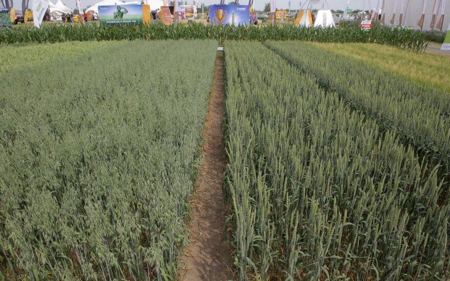 """Žemės ūkio paroda """"Agrovizija 2019"""""""